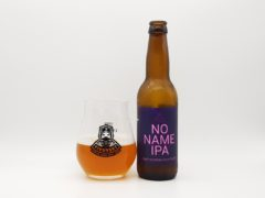 Pivovsky No Name IPA alk. 5%