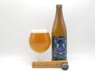 Craft Kingdom Hop Fortune